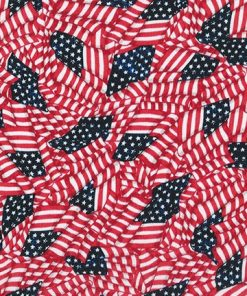 "Flags 108"" Patriotic Quilt Backing, Robert Kaufman"